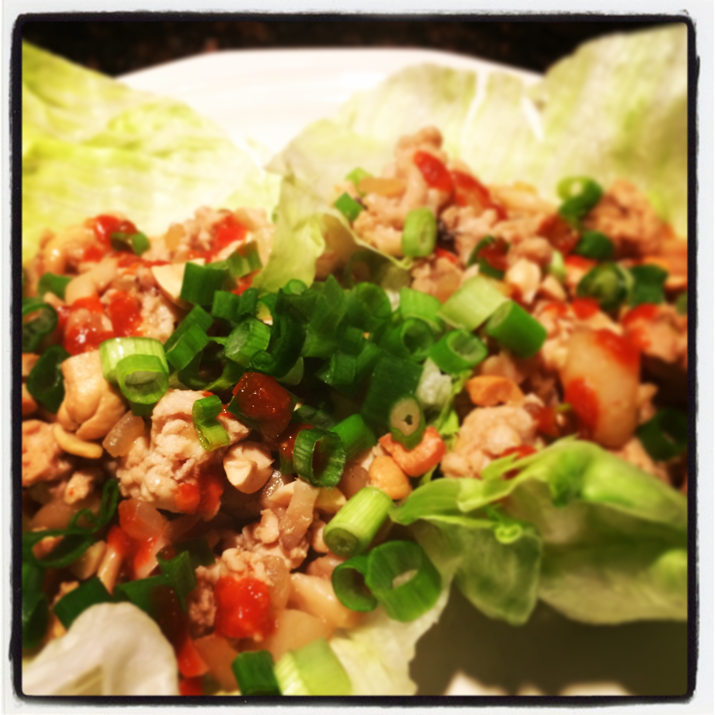 Andrea's Asian Turkey Lettuce Wraps